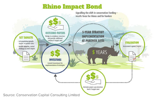 Rhino Impact Bond