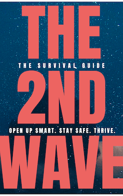 The Second Wave book
