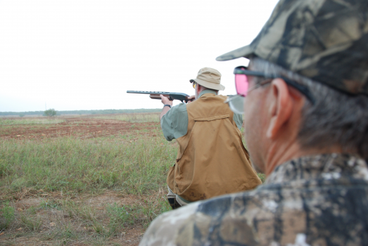 Your Checklist For Dove Hunting in Texas and Dove hunting tips