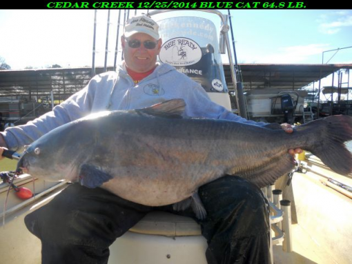 Fishing guide catches 64 8 pound catfish on cedar creek for Blue creek fishing report