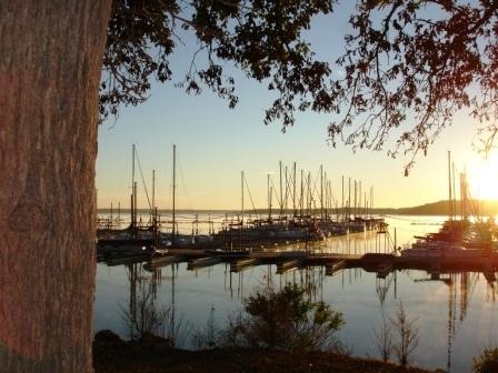 Cedar Mills Marina And Resort Lake Texoma