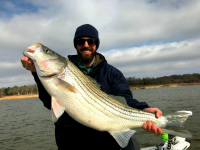 Trophy Months for Stripers