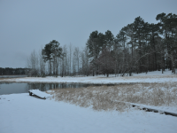 Winter Pic - January 2014
