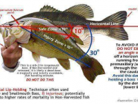 Tips on handling a big bass
