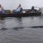 Huge Gar Spotted in Sam Rayburn