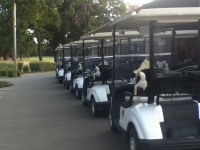 New Cart Fleet