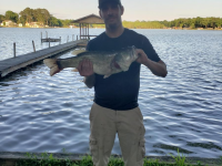 Largmouth Bass