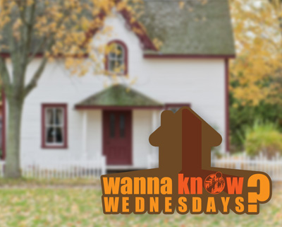 Fall Fun ( What You Want To Know Wednesdays)