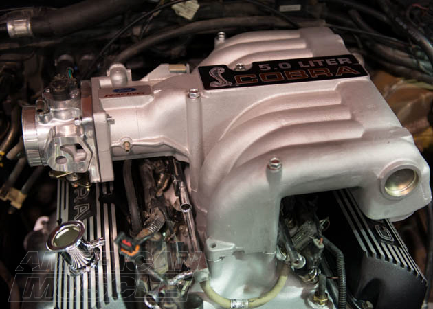fox body throttle bodies
