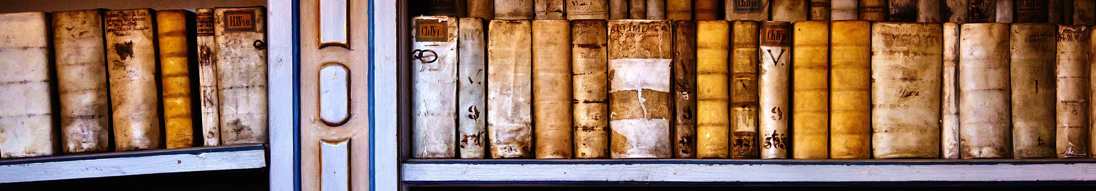 Shelf of old, weathered books