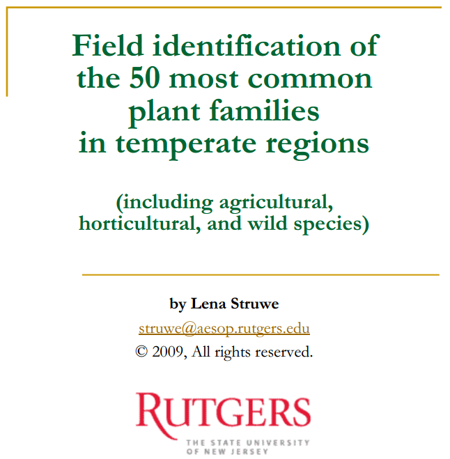 Field identification of the 50 most common plant families