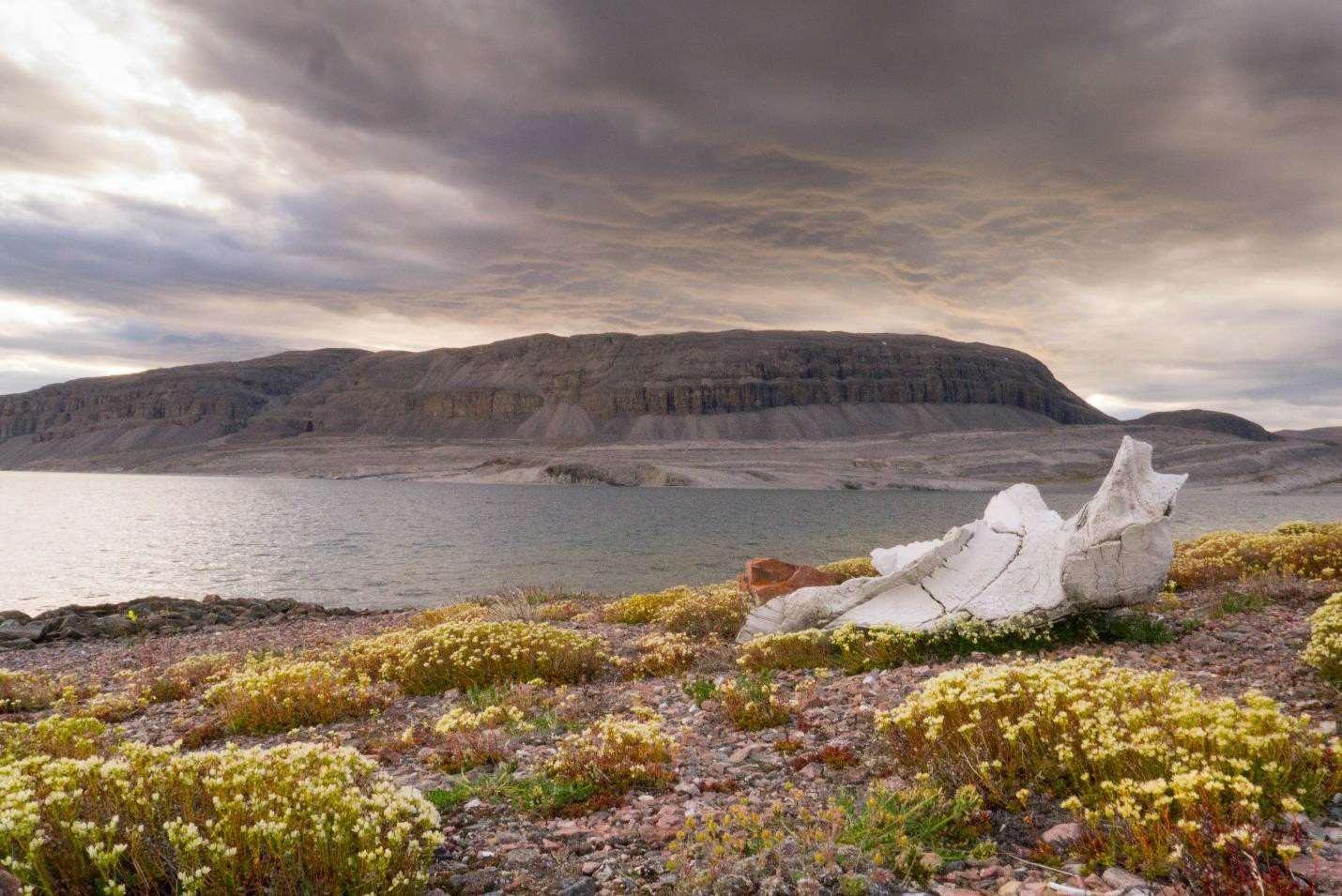 Baffin Island Photo 2