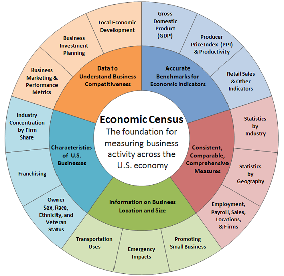 Economic census graphic