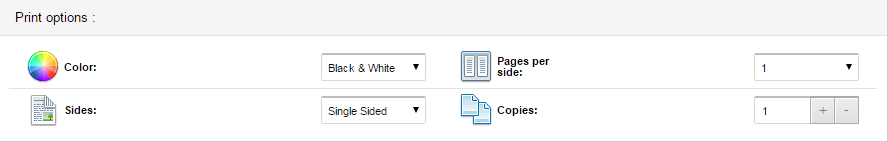 screenshot of print options
