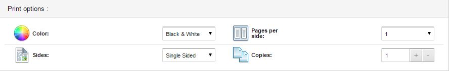 screenshot of print options