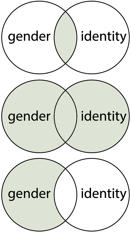 venn diagram showing gender and identity in the circles