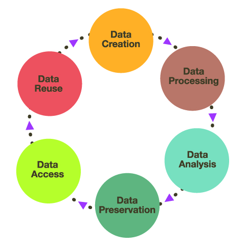 Research Data Management Definition Research Data