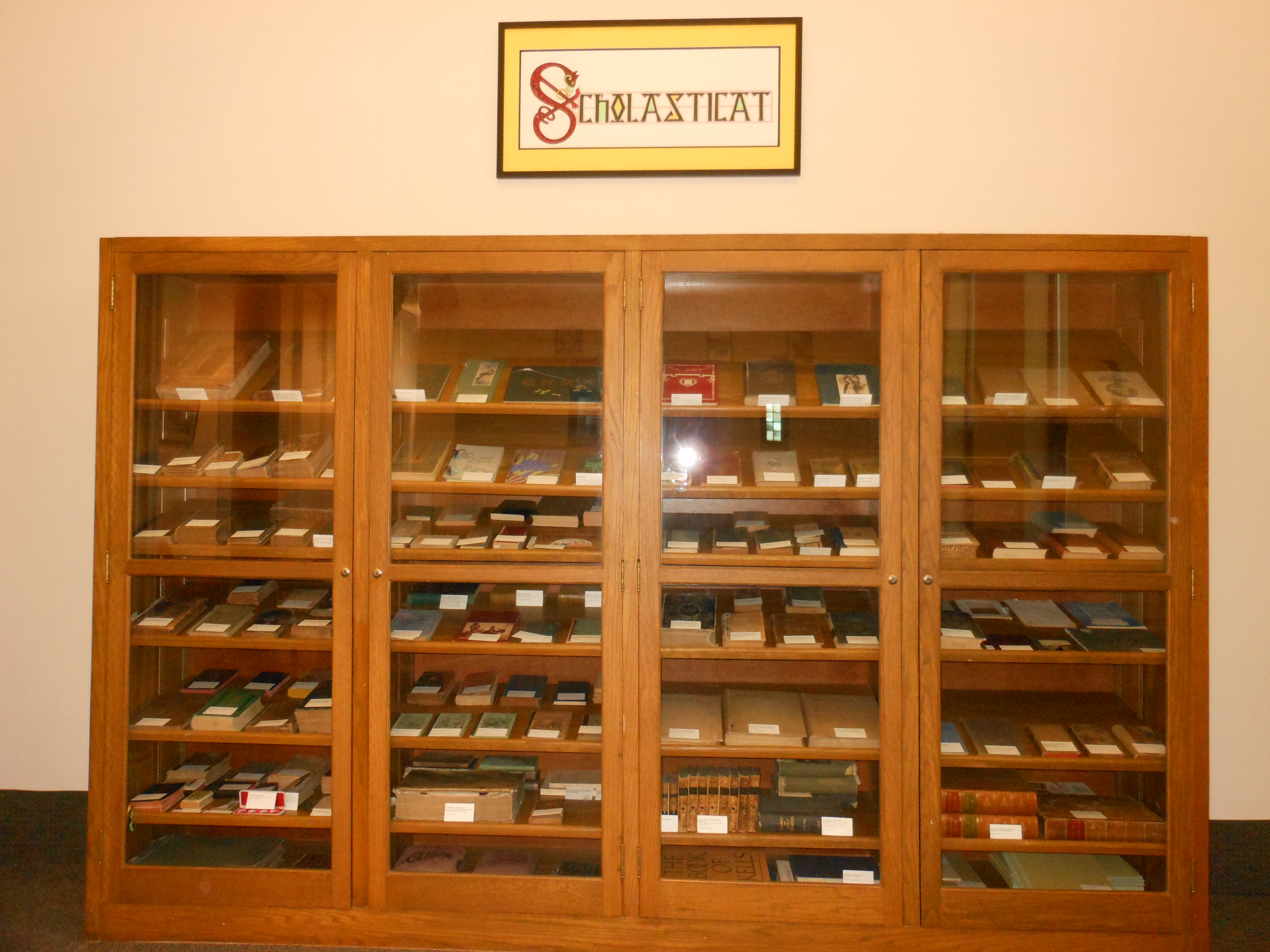 Special Collection Bookcase in Library