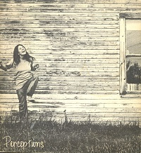 Cover of Perceptions, a literary journal