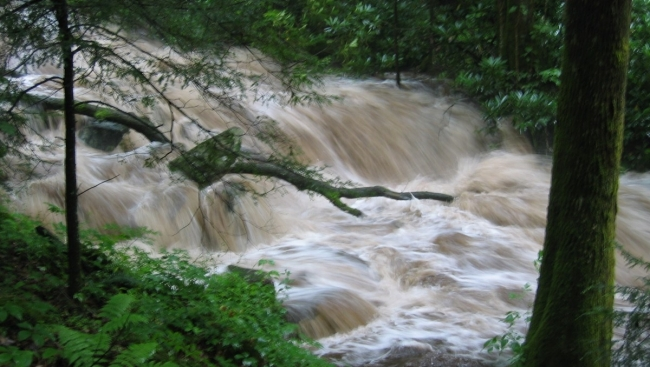 a river of brown water rushing down a hill