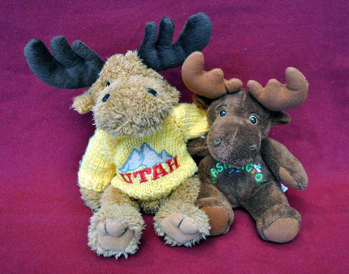 Washington Moose and Utah Moose