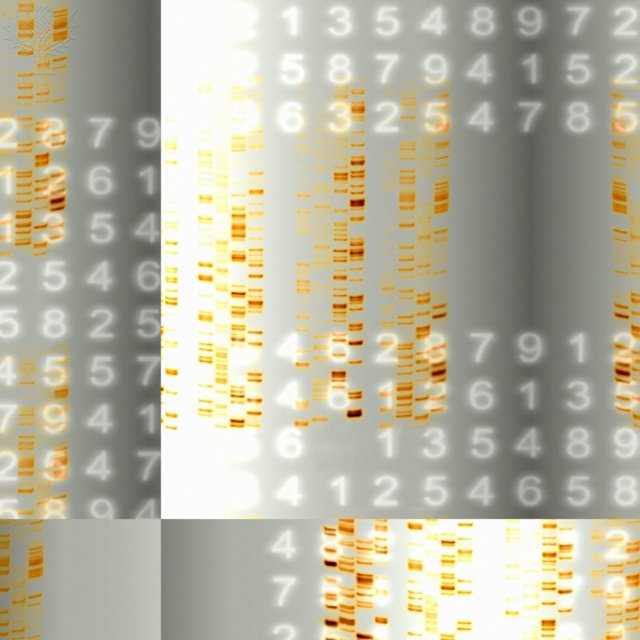 Britannica ImageQuest - DNA autoradiograms and numbers