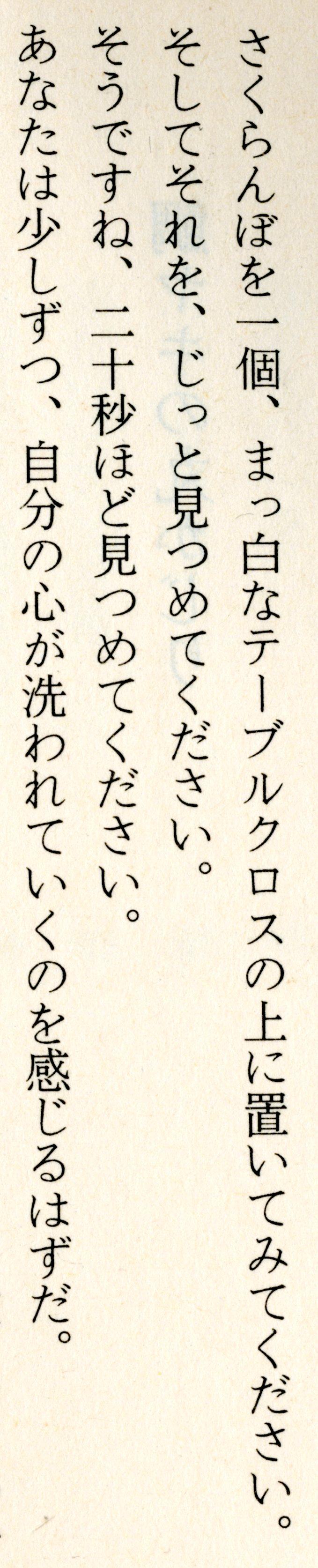 essay about japanese language
