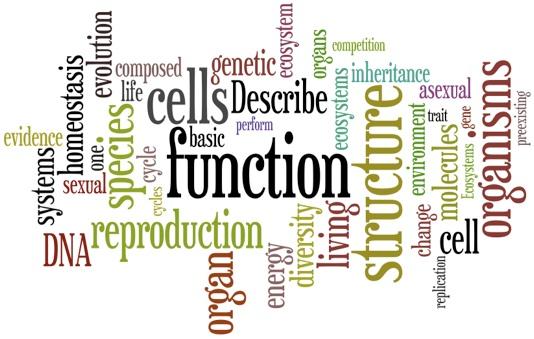 introduction - grade 11  biology