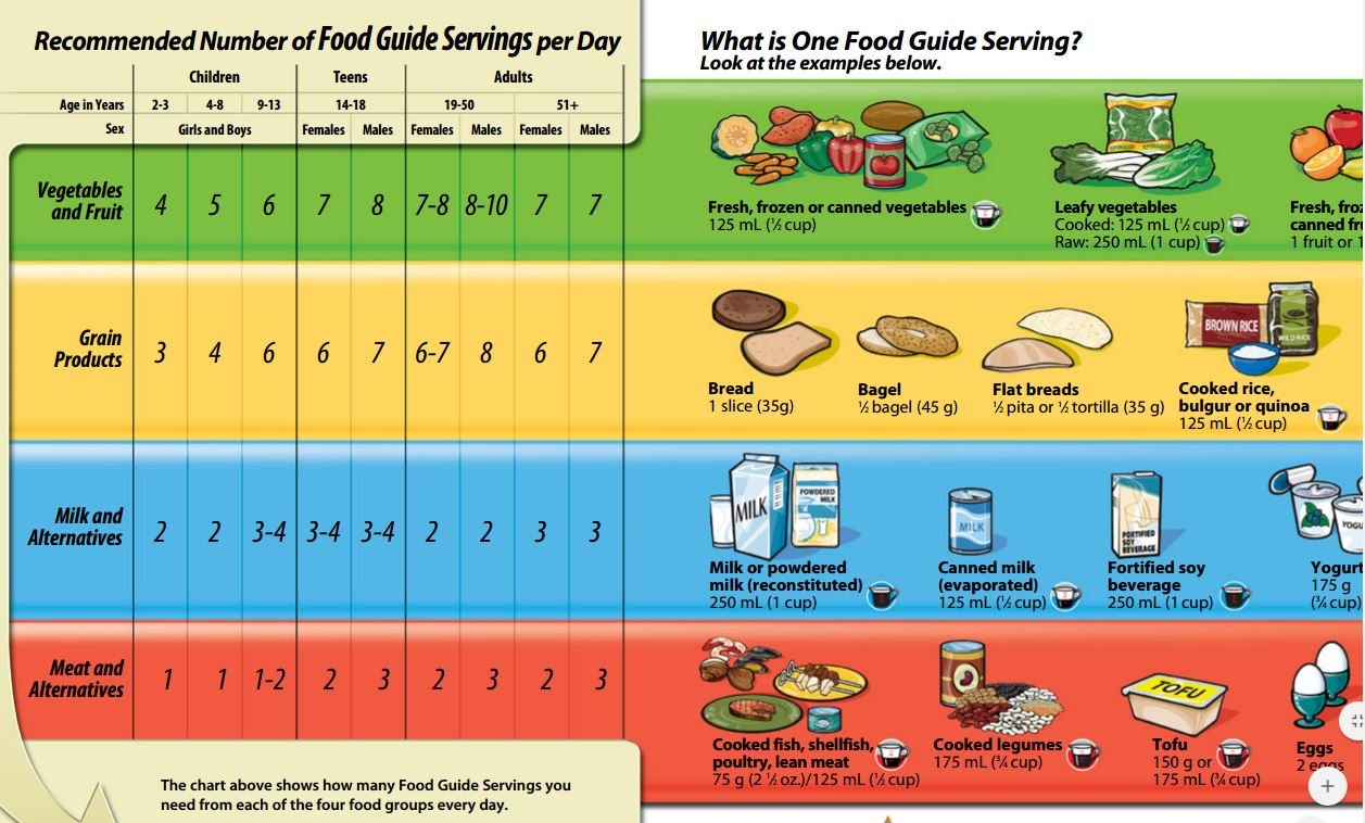 Canada S Food Guide Themes