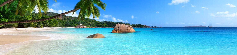 Cayman Islands Law Firms M