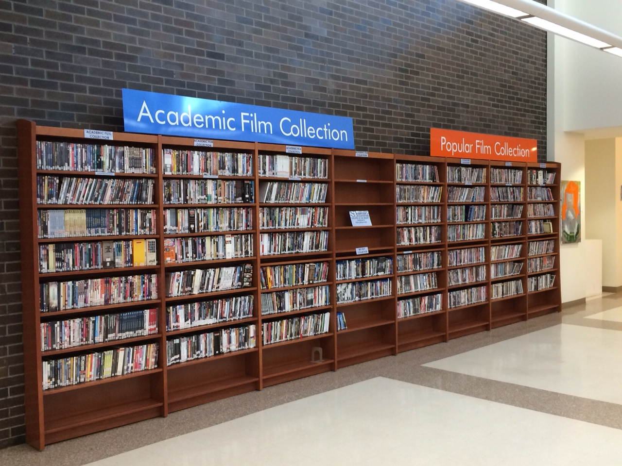 Library's film collection shelves.