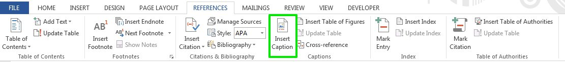 Adding captions in MS Word