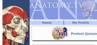 skull illustration, anatomy tv logo