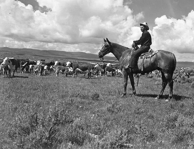 Joe Oliver on horseback, Grant County, Oregon