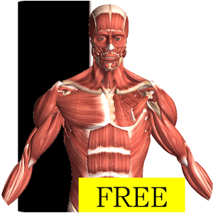 Mobile Apps FREE - Human Anatomy - LibGuides at Logan University Library