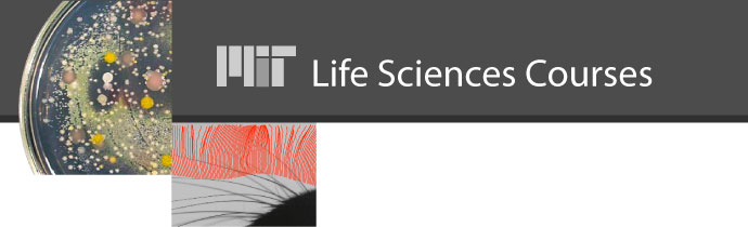MIT Life Sciences Courses image