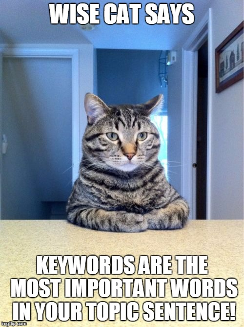 "image of cat with text that says ""wise cat says keywords are are most important words in your topic sentence"
