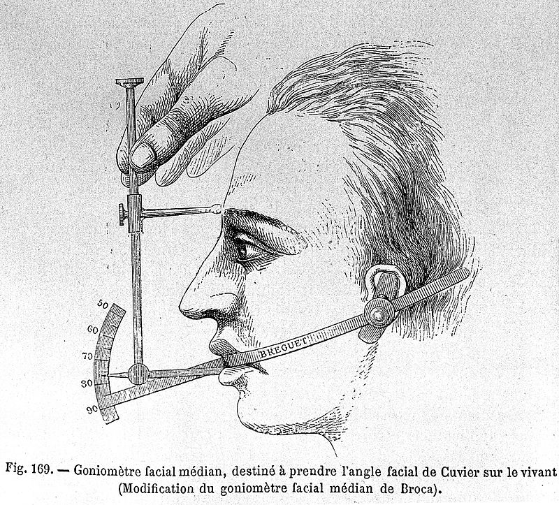 Paul Topinard Craniology