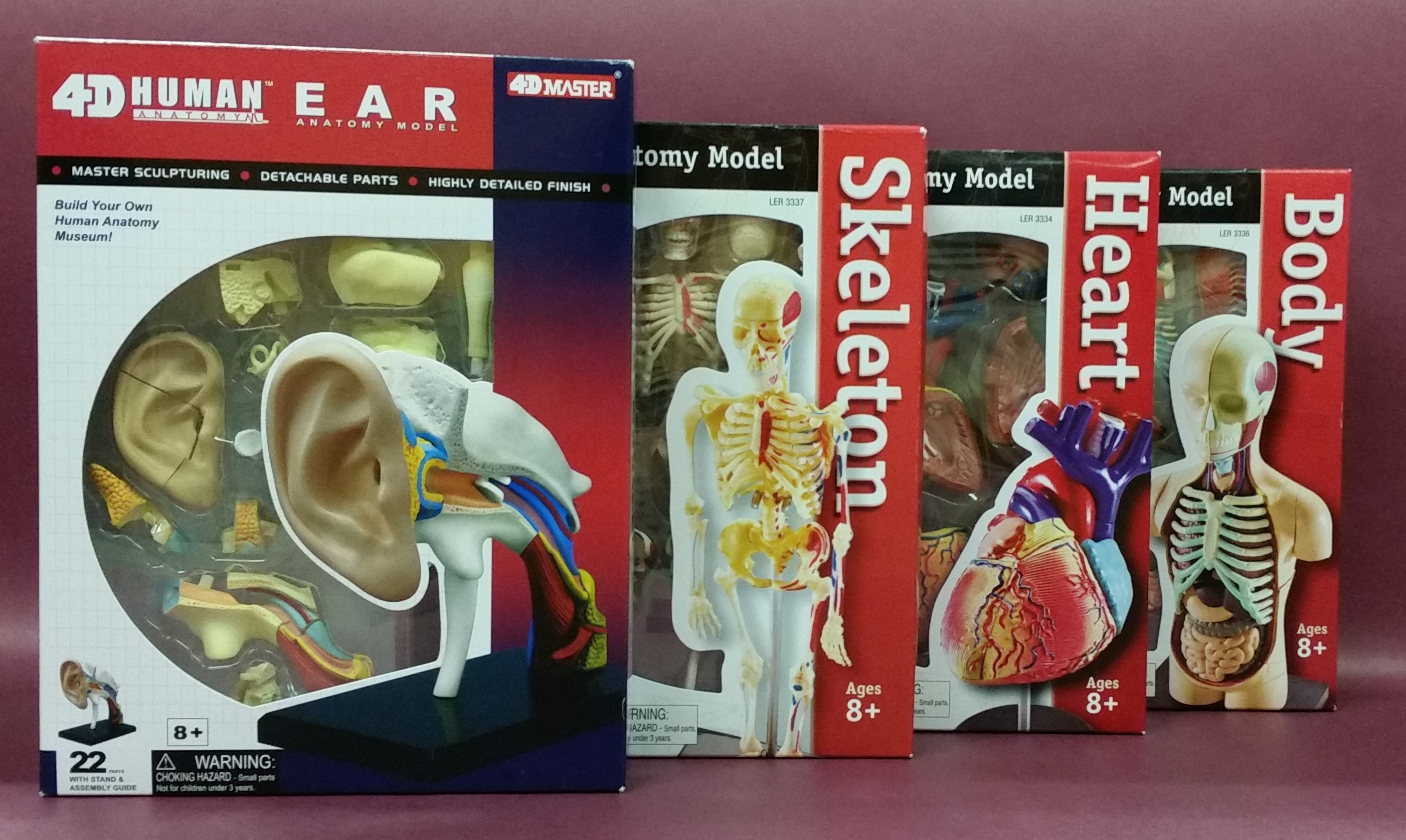 4 boxes for build it models-ear, skeleton, heart, body