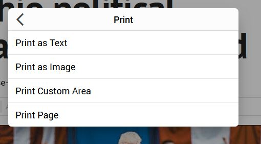 Print icon with choices