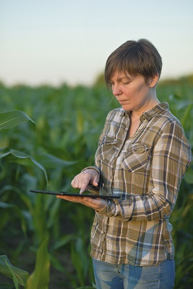 Farmer searching online using tablet device