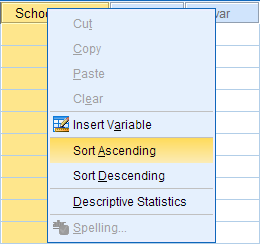 Data Creation in SPSS - SPSS Tutorials - LibGuides at Kent State