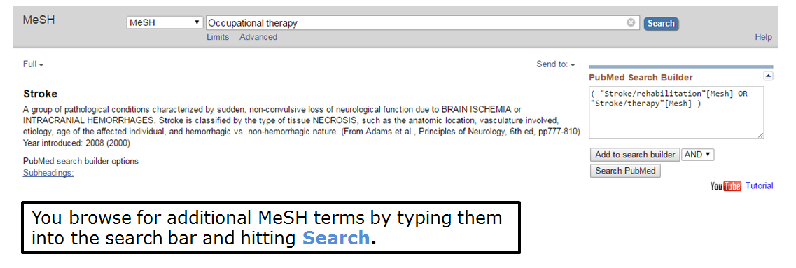 You browse for additional MeSH terms by typing them into the search bar and hitting search.