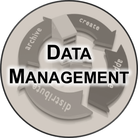 Icon for data management services