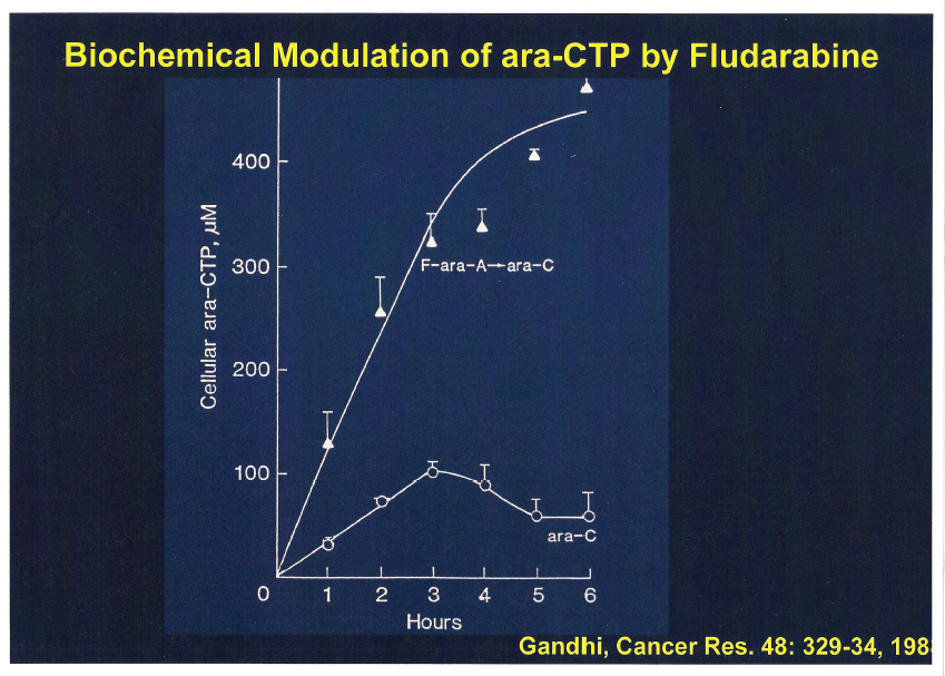 Chart - Biochemical Modulation of ara-CTP by Fludarabine