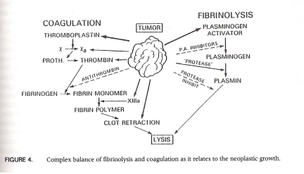 Figure:  Taken from Raymond Sawaya, Fibrinolysis and the Central Nervous System (Philadelphia, PA: Hanley and Belfus, Inc., 1990), p. 15.