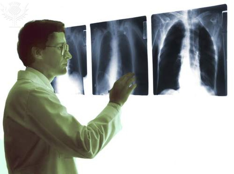 Radiologic Technology - *School of Health Sciences* - RasGuides at