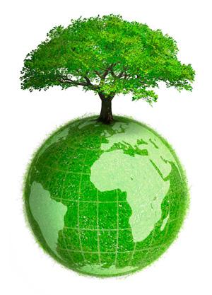 environmental health public health libguides at the university