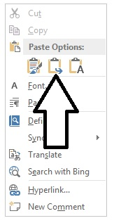 MS word paste icons