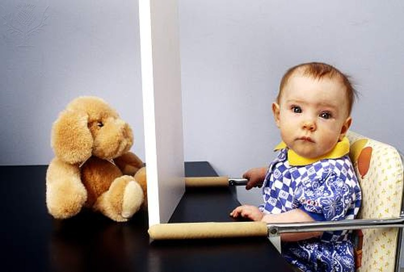An infant ignores a stuffed animal that an experimentor hid from view